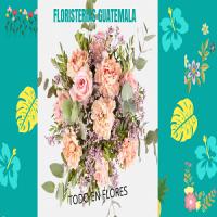 Floristerias Guatemala