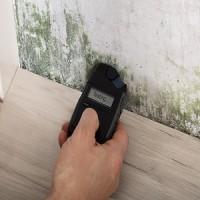 Miramar Mold Inspection