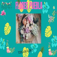 Flores Puebla