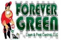 Forever Green Lawn & Pest Control LLC