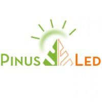 Pinus LED