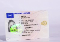 Are You Curious To Learn About Cheap Id?
