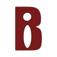 Brick Imaging Inc