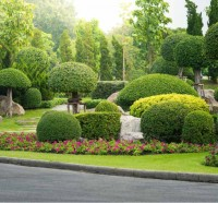 Bryson Landscaping Inc.