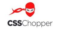 #1 Web Development Company to Hire Web Developer - CSSChopper