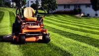 Creative Cuts Lawn Care LLC