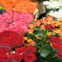 Flower Fair