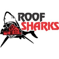 Roof Sharks