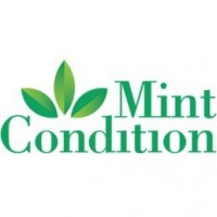 Mint Condition Commercial Cleaning Jacksonville