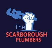 Mister Plumber Drain Expert Scarborough