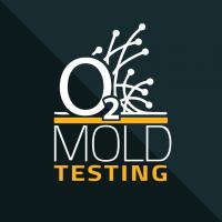 Mold Testing | Mold Testing Arlington
