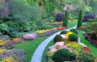 Olvera Landscaping