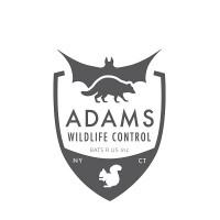 Adams Wildlife Control