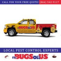 It's Bugs Or Us Pest Control - Magnolia-Spring