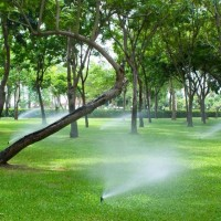Travis Reed Irrigation