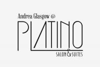 Platino Salon and Suites