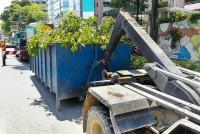 Value Dumpster Rental Hammond