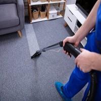 San Jose Carpet Cleaner