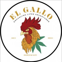El Gallo Labs, Inc.