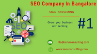 Sann Consulting Best SEO company India