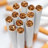 Tobacco & Cigar Expo