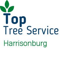 Top Tree Service Harrisonburg