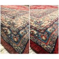 DyeBold Carpet Dyeing