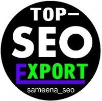 Marketing Sameena seo