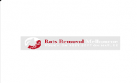 Rats Removal Melbourne