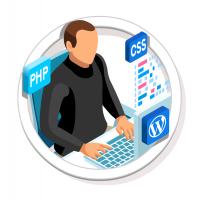 Web Design Agency and WordPress Development