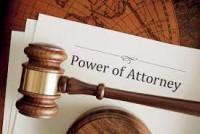 Sandra Law Attorney