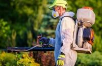 Richmond Pest Control Solutions