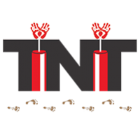 TNT Consulting Firm LLC