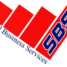 SMALL BUSINESS SERVICES LLC – Professional Accounting Services