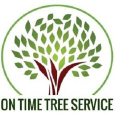 On Time Tree Service