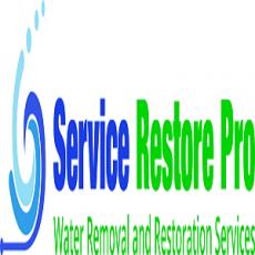 Service Restore Pro