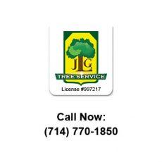 JLG Tree Service
