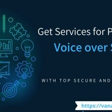 Ultimate E learning voice over Services at Affordable Price
