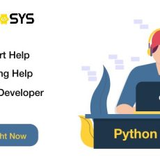 Hire Best Python Development Services Company in Usa
