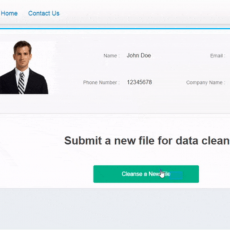 B2B Data Cleansing Services