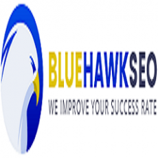 BlueHawkSEO - SEO Services: Guest Posts, PBNs and SEO Packages