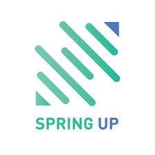 SpringUp Capital Pvt Ltd