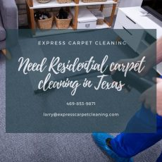 Top 10 Carpet Cleaning companies in TX