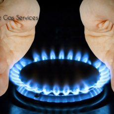 Prestige Gas Services