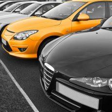 Avis Car Rental