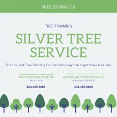 Best Tree Trimmer Near Me Roswell GA
