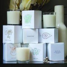 Wide Range of Eye-catching Packaging Designs of Custom Boxes