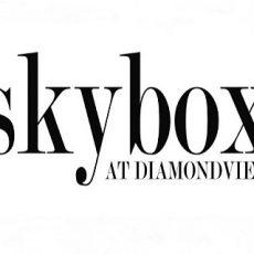 Ultimate Skybox at DiamondView Tower
