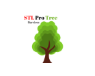 STL Pro Tree Services