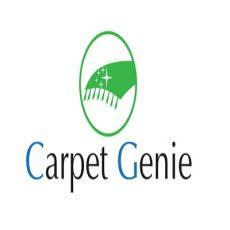 Carpet Genie